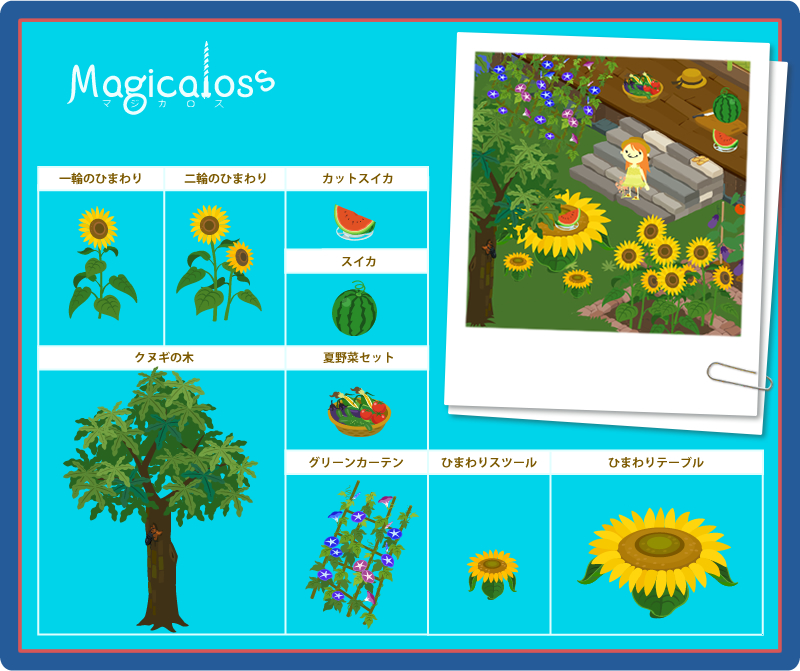 夏の植物シリーズ