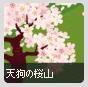 天狗の桜山